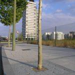 02barreiro-entourage-arbre_gr-150x150 - barreiro_granit - Entourage d'arbre Mobilier urbain