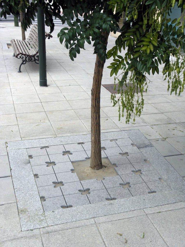 Volvoreta Entourage arbre_GR
